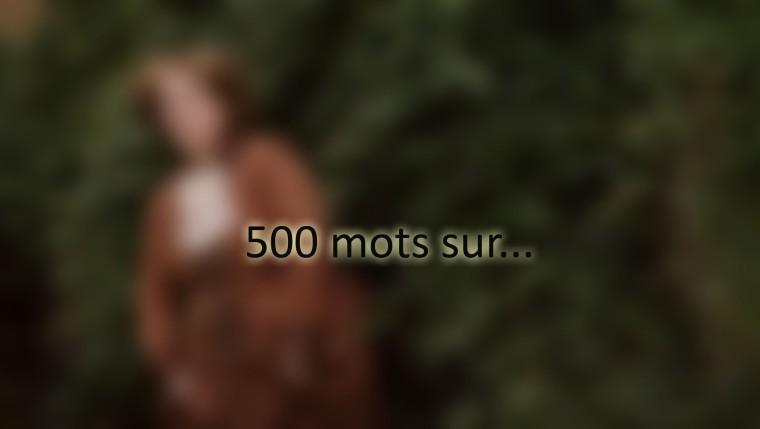 500 copie4